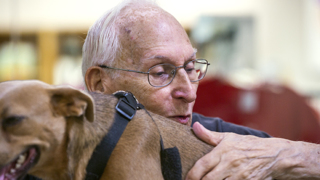 A matchmaker for shy, old, disabled dogs at the SPCA