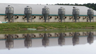 Nuisance or necessary? Both sides debate proposed farm bill.