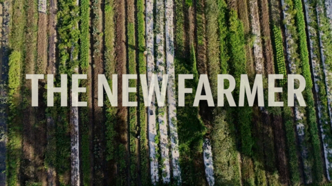 Small farms, big ideas: NC has a new crop of farmers willing to try something different