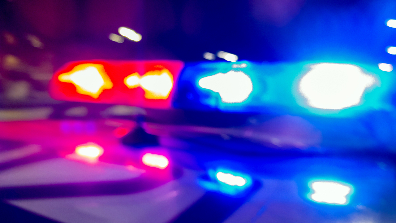 Amid rash of horse stabbings, one is shot and killed in South Carolina, deputies say