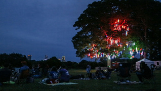 Music controlled neon lights illuminate Dix Park trees
