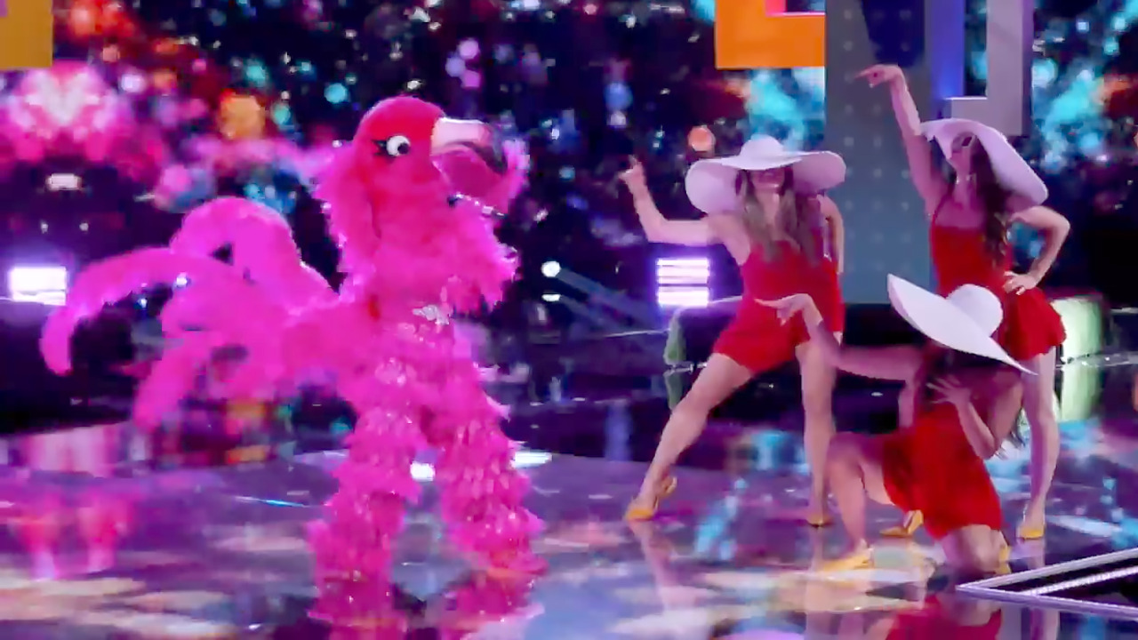 who was the flamingo on the masked singer