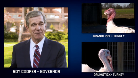 NC governor pardons 2 turkeys — Cranberry and Drumstick — in the most 2020 way possible