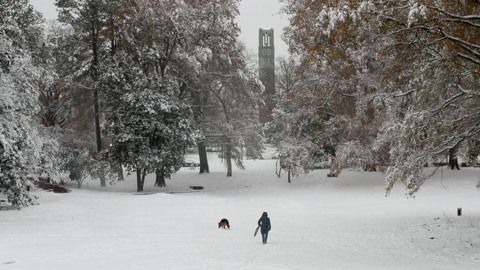 Skis, snowballs and Southern snowmen: What's a Southern snowman?