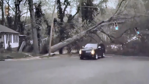 'That was lucky!' Watch as falling tree narrowly misses SUV on North Carolina street