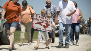 State officials rally with hogs farmers in Duplin County