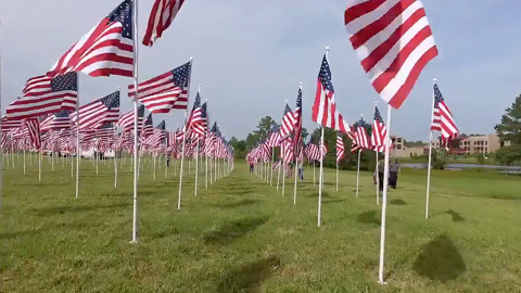 There are heroes of all kinds. This NC field with hundreds of flags honors them all.