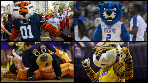 Fur over feathers: In my perfect NCAA bracket, people mascots are creepy and cats reign supreme