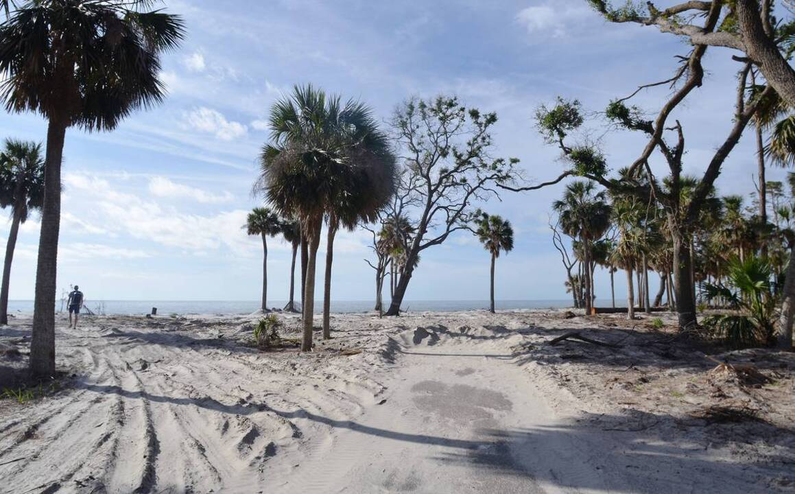 Hunting island state park ready to reopen with new look - Towne place at garden state park ...