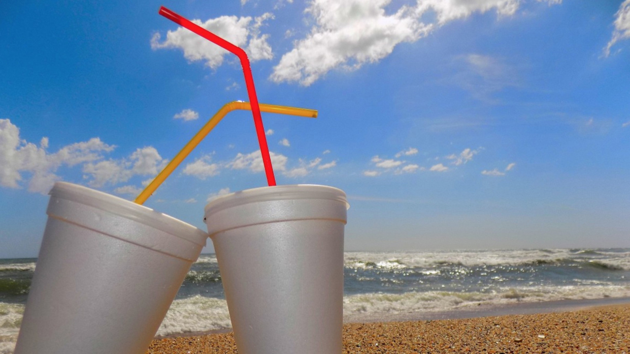 To curb pollution, Miami Beach bans plastic straws and stirrers citywide