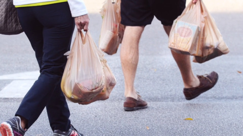 After the Beaufort County ban, why are they still using plastic bags?