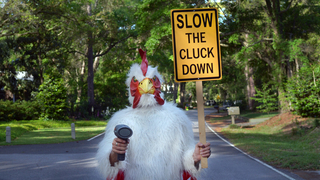 Why would a man wear a chicken suit to slow speeders on his street? Here's why