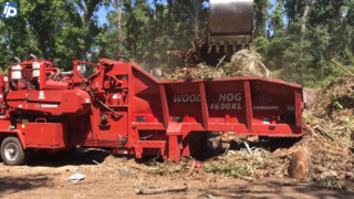 Too noisy? Hilton Head residents worried about tree service coming too close to home