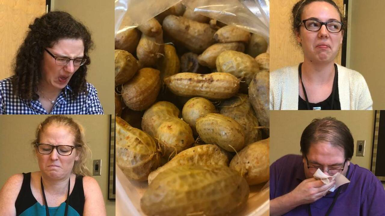 A Yankee in Lil' Mr. Goober's Court: My first boiled peanut experience