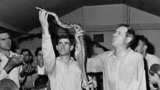 Snakes in church? What to know about serpent handling