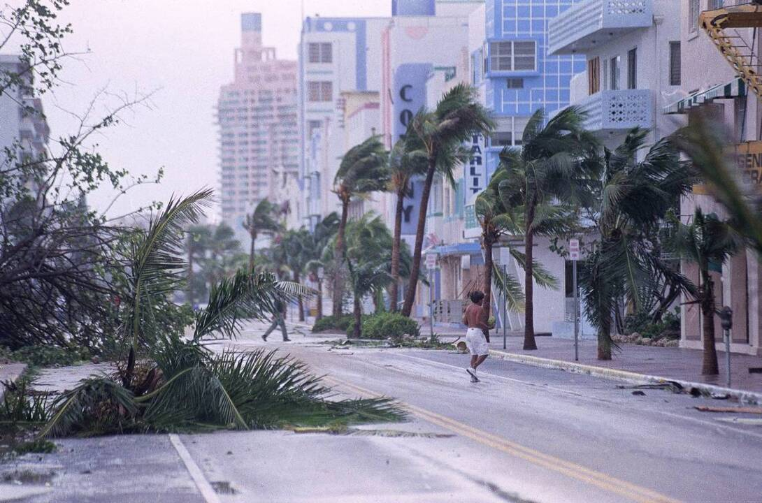 Buying or preparing food for Hurricane Michael? 5 tips you should know.