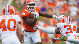 See top photos from the Clemson Spring Game