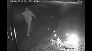 Possible cemetery vandalism suspect