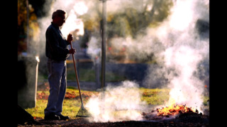 Burning leaves is a great way to get revenge on your neighbors