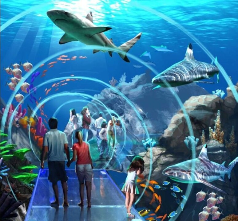 CEO shares update on Mississippi Aquarium construction ...