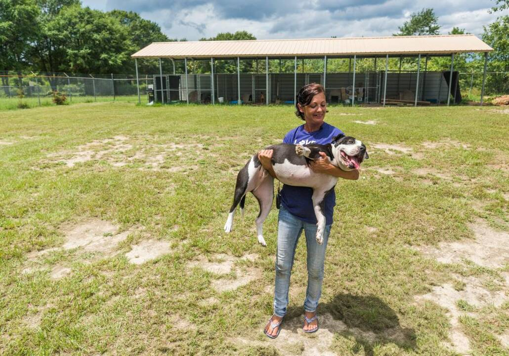Cops bust dog fighting ring. Eight Florida men are in custody