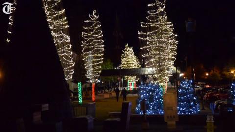 Christmas lights in Macon won an international award through 'vision, tenacity and hard work'