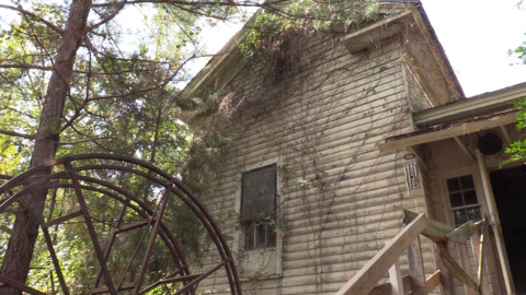 Is this abandoned Warner Robins house really haunted? Some think so