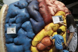 A walk through an inflatable brain sparks young imaginations