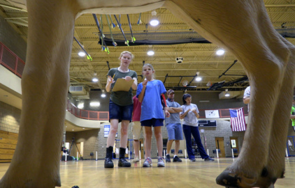 Warrior archers win state, set to shoot in national tournament