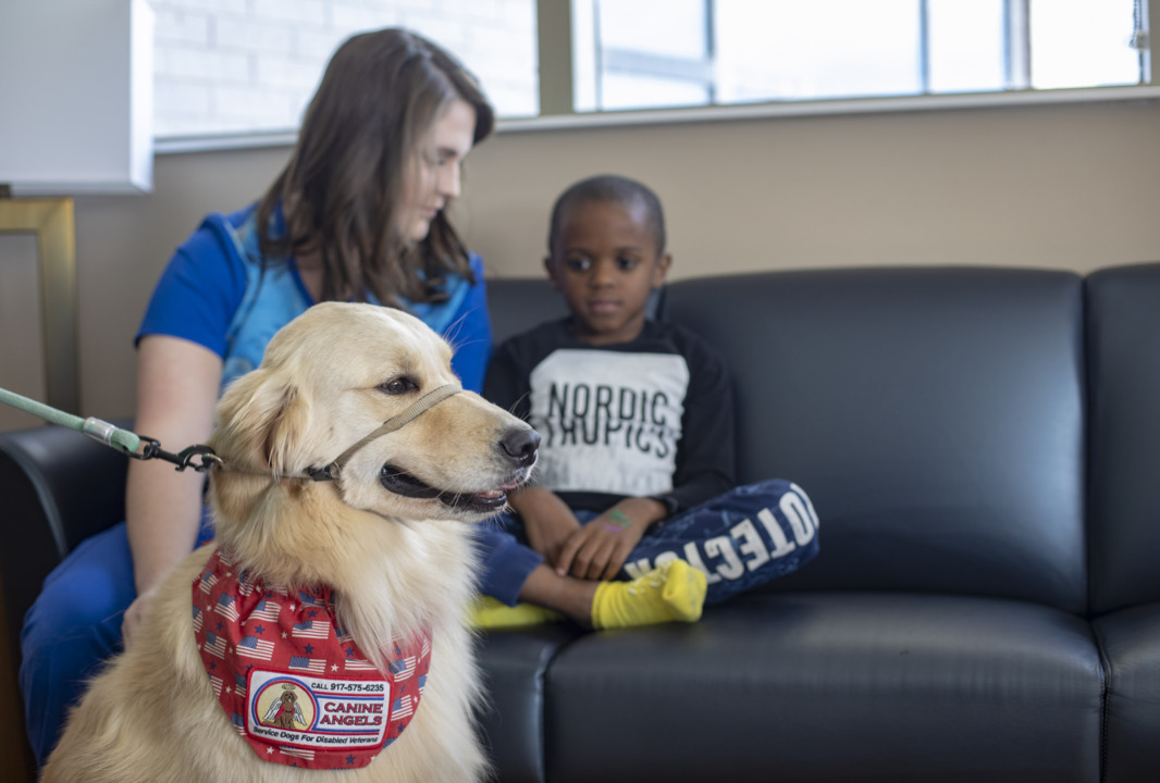 'Best job ever': How Grand Strand is using dogs to bring smiles to patients