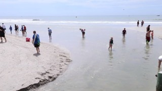 Swimming in Grand Strand swashes and ocean outfalls unsafe