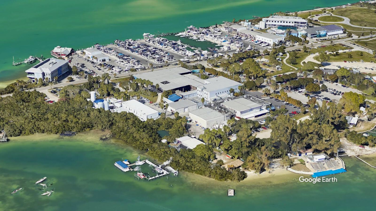 Mote Marine seeks $5 million from Manatee County. Here's how it wants to use the money