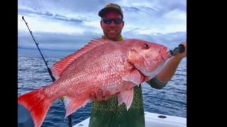 Reeling in a 20-pound red snapper