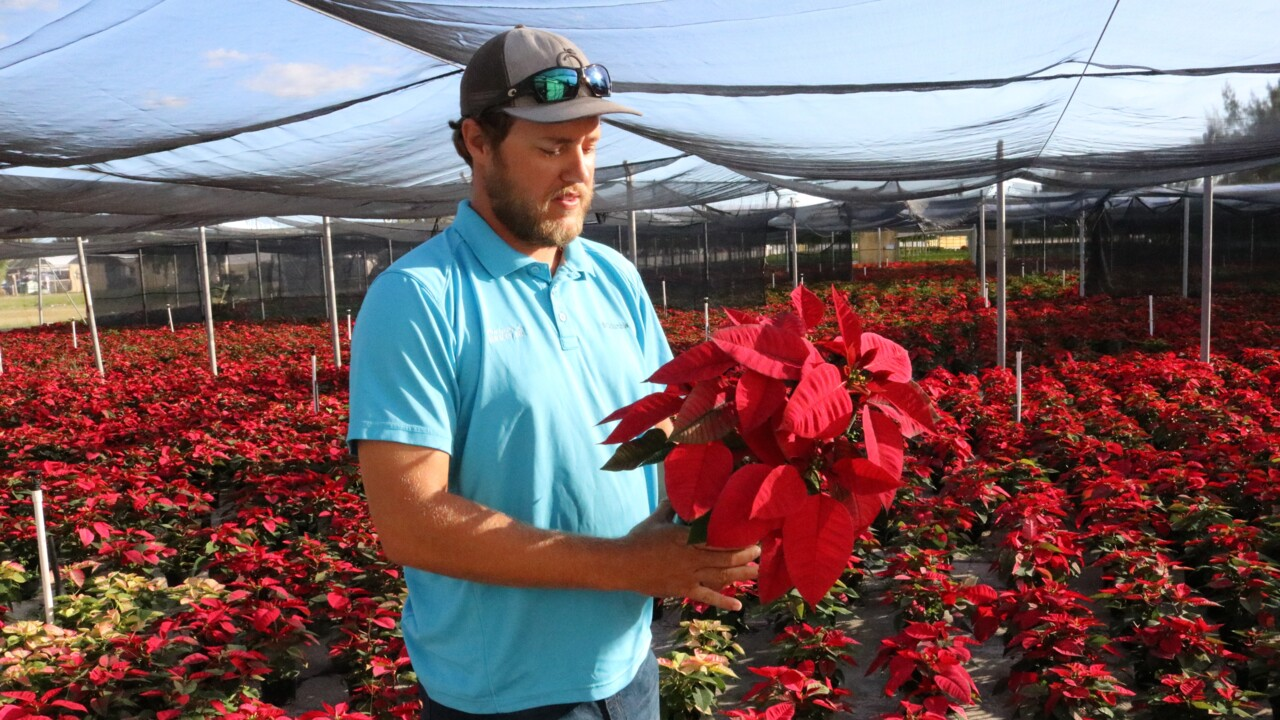 Marty Orban lived life to the fullest. The poinsettia drive-through will be his memorial