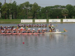 Watch dragon boat paddlers compete at Nathan Benderson Park