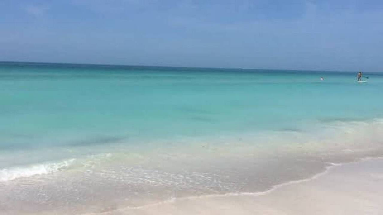 Manatee or Sarasota? Town of Longboat Key residents will have a say in upcoming survey
