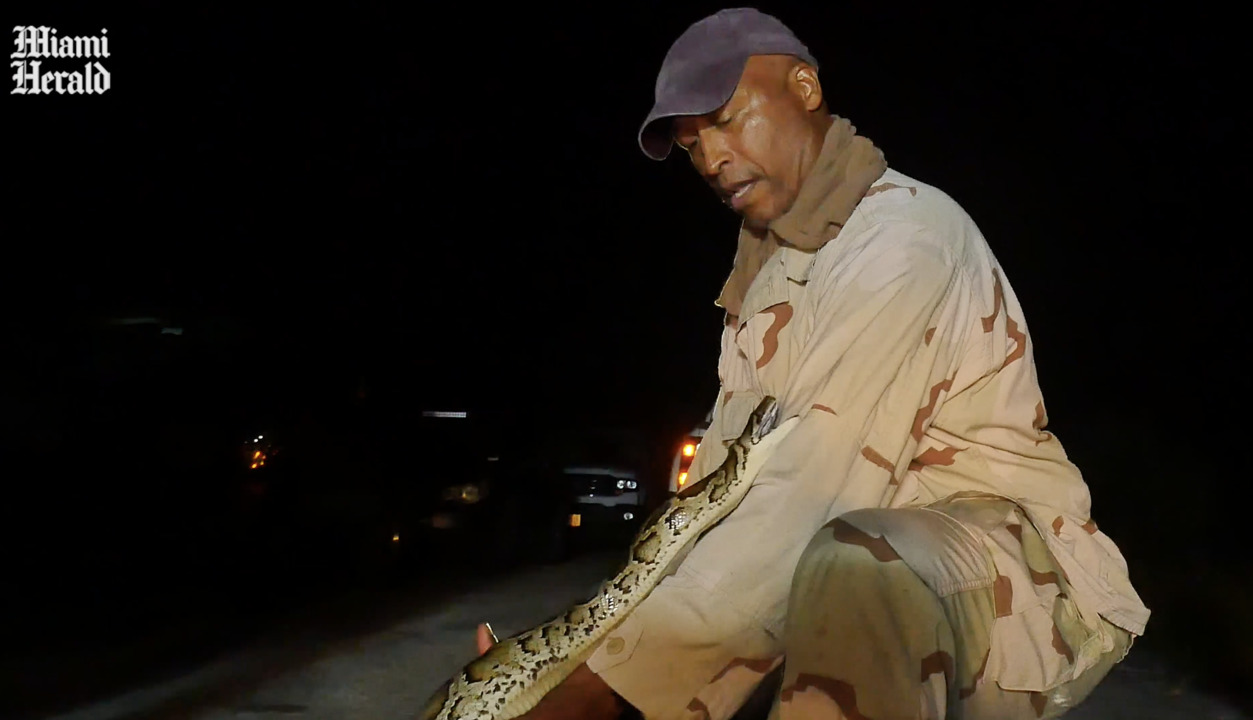 For war veterans, a python hunt can help fight PTSD