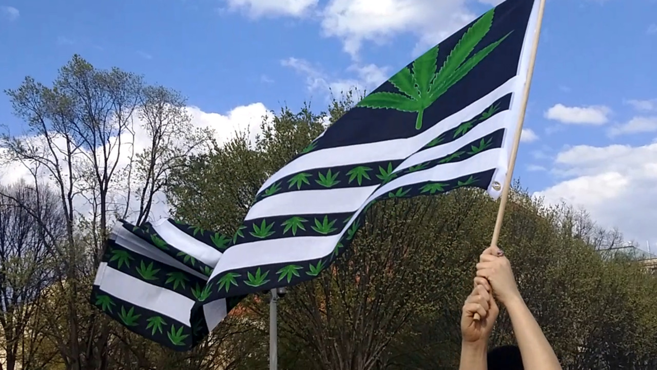 Opposition group forms to combat Floridians' push for recreational marijuana
