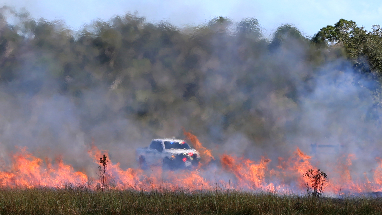 Fighting fire with fire: How intentional burns keep the Everglades alive