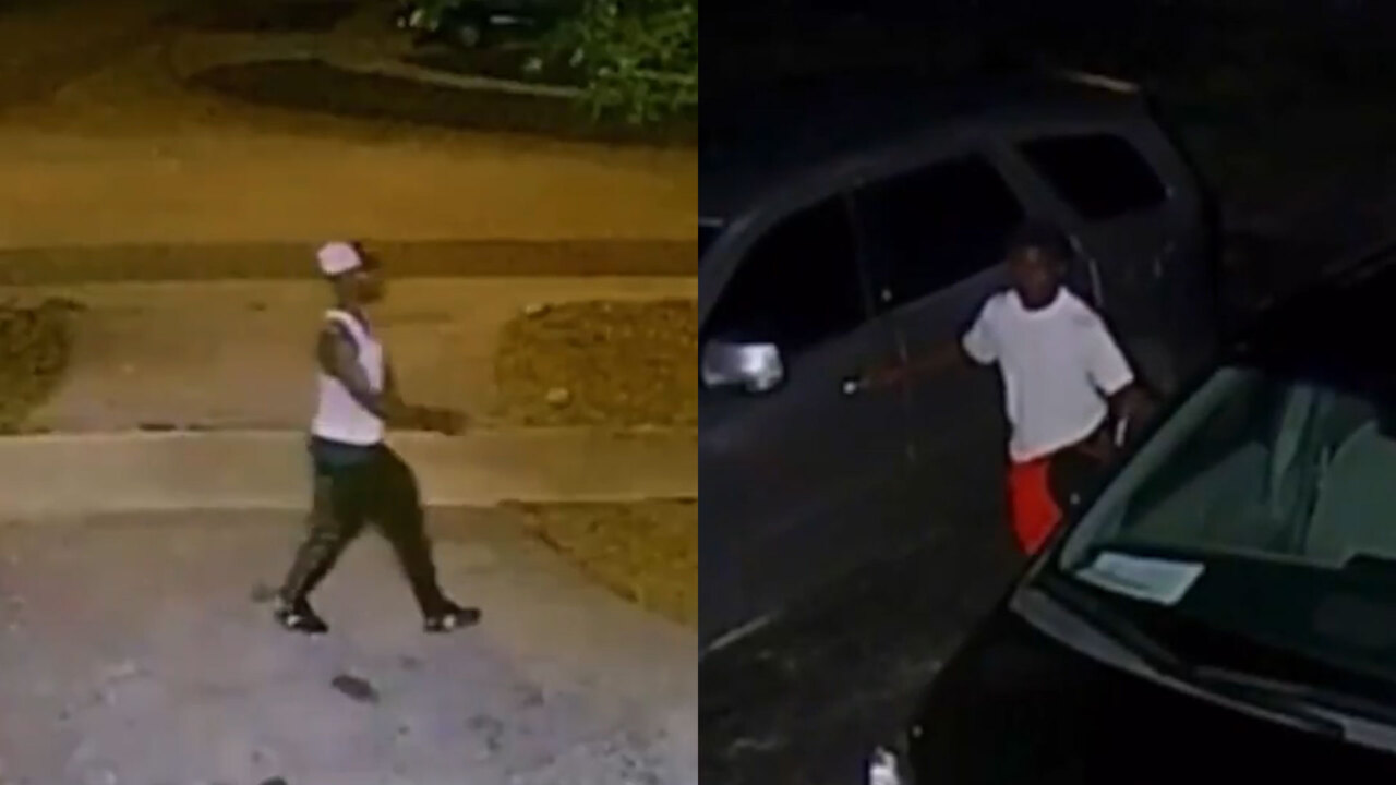 They broke into seven cars, and then made a run for it