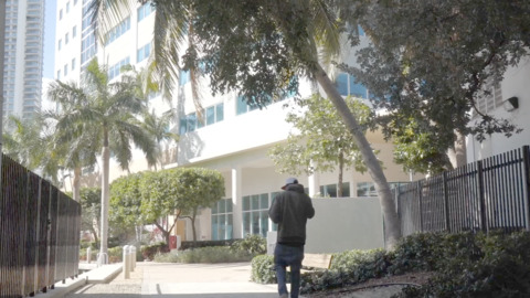 'Their lives are on hold': Miami's immigration court grinds to a halt because of shutdown