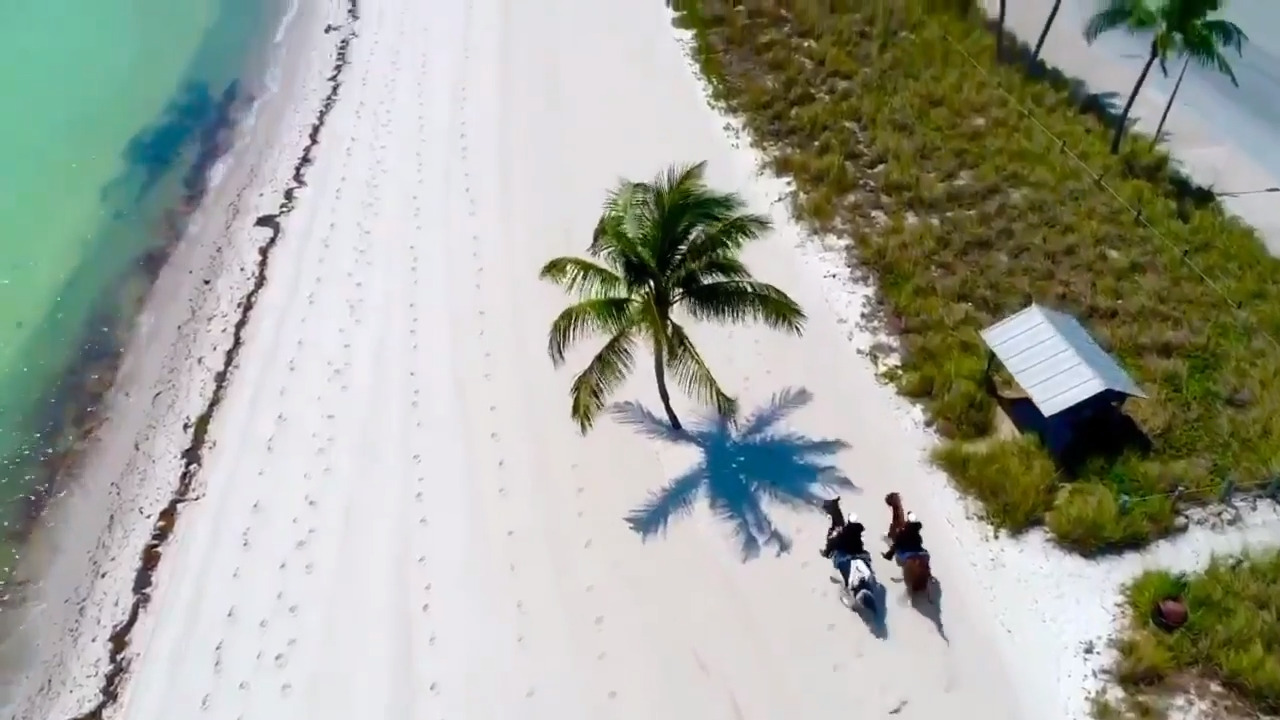 Watch these police horses race down an empty beach in Key West