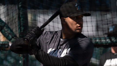 The Marlins got a live look at the Mesa brothers at hitting camp. Here's what they saw