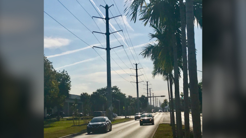 15-story FPL power lines would be a jolt to the Underline, neighborhoods, businesses