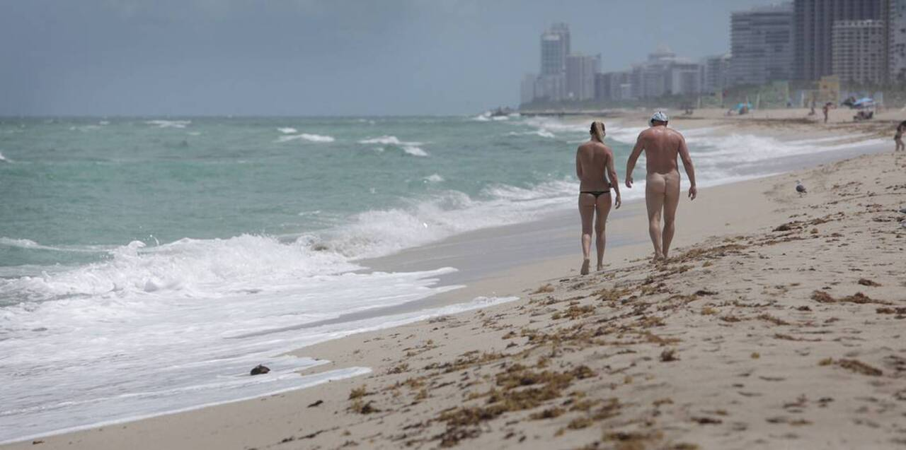 Visitors to popular nude beach unafraid after recent shark