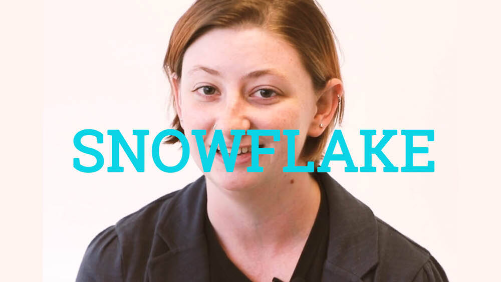 What Does snowflake Mean? | Slang by Dictionary com