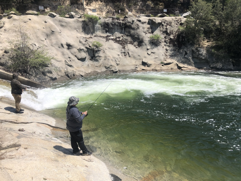 Fishing report for week of Sept. 25-Oct. 1: Wishon trout fishing 'red hot'