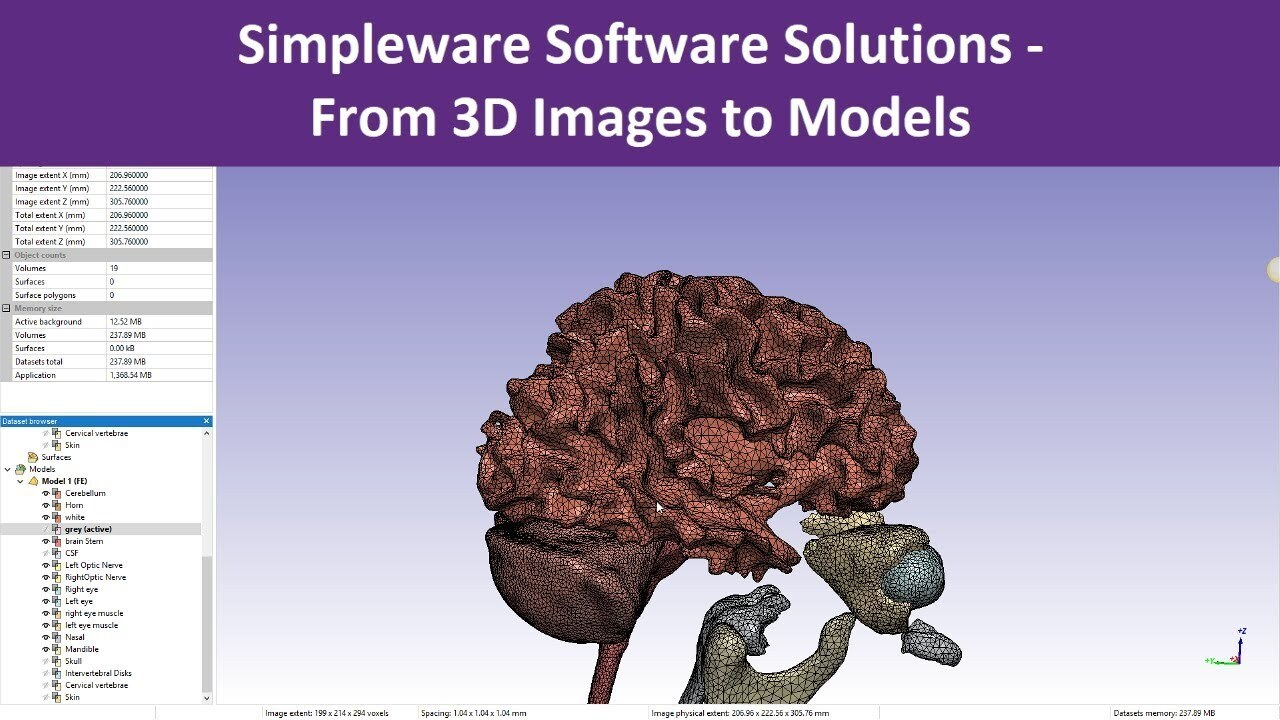 foundations of physically based modeling and animation