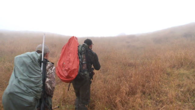 MeatEater Season 7: Steve and Remi Navigate Afognak Brown Bears and Fog for Elk