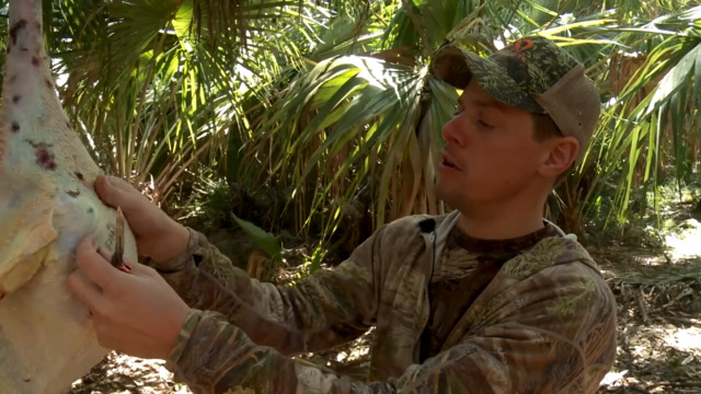 How to Pluck and Clean a Turkey with Steven Rinella